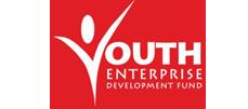 Youth Enterprise Development Fund